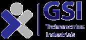GSI Treinamento de Pintor Industrial (GSI Macaé)