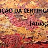 Manutenção da Certificação (Atuação na área)